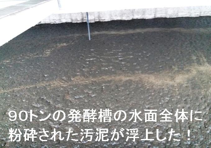 浮上した粉砕化汚泥1