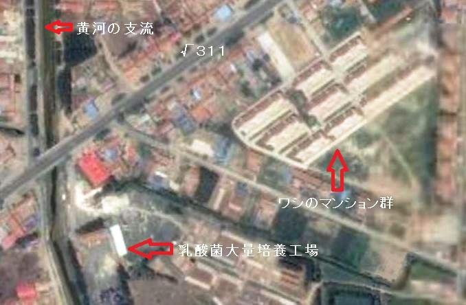 新日本人の住宅団地